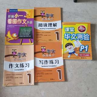 Assessment Books chinese P1