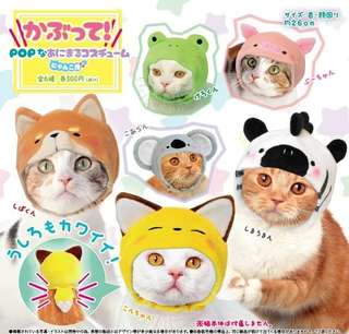 [PO][GO] Gachapon - Wearable Pop-colour Animal Costume cat ver. (Kabutte Pop na Animal Costume for nyanko)
