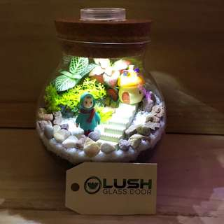 Perfect Gift for Mother's Day/ Father's Day/ Christmas/ Xmas/ Birthday/ Congrats/ Farewell/ House warming/ - Real Moss Plant Terrarium with Light