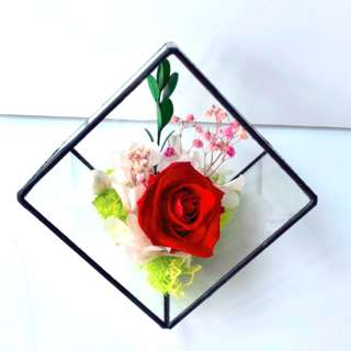 Coloured Rose in Glass Cube (Option for Rose Colours)
