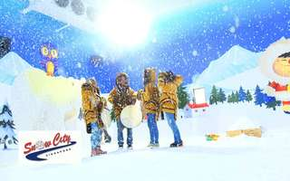 2-Hour Snow Play for 1 Adult (Singaporeans and PR only)