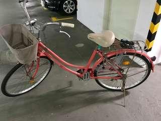 City Bike - Aleoca Signora