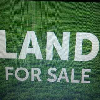 tanah dijual di puncak pass