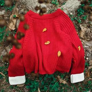 Sweater (Red)