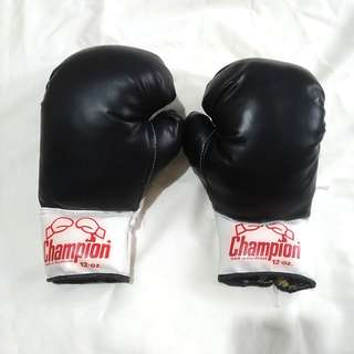 12oz Champion Boxing Gloves