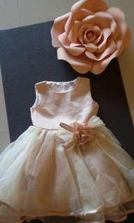 Flower girl princess dress