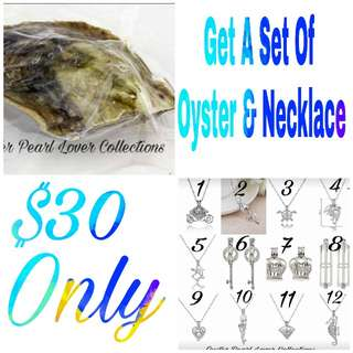 SET Of Pearl Oyster & Necklace