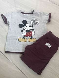 Maroon Fox Disney