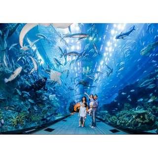 S.E.A. Aquarium - Etickets
