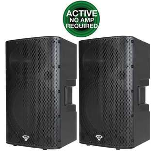 Cerwin-Vega Professioanl P1500X 15″ PA Powered Active Loudspeaker 2 x 1,500 Watts (UP $2,800) Warehouse Price $1,350.00  for 2 units  (last few units left while stock lasts!!)