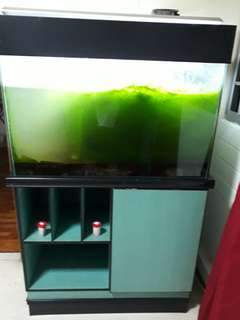 Fish tank custom build.
