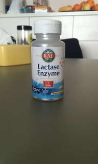 Lactase Enzyme for Milk Digestion
