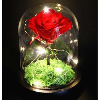 Elegant Glass Real Flower LED Display Bell Jar Dome Immortal Preservation Love shape Glass Jar Rose Colour Black Base