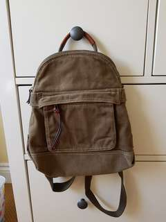 Fossil Back Pack