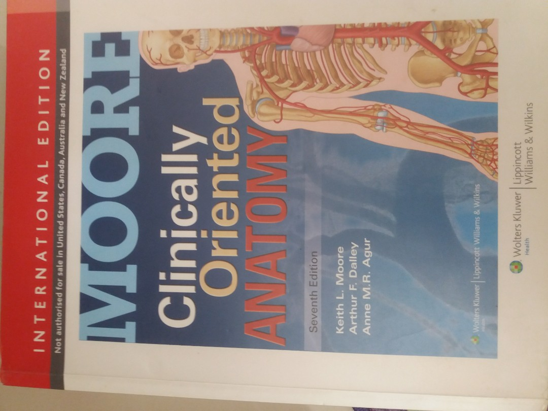 Keith moore clinically oriented anatomy new books, Textbooks on ...