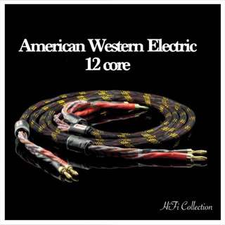 American Western Electric high end class speaker cable  2 meter