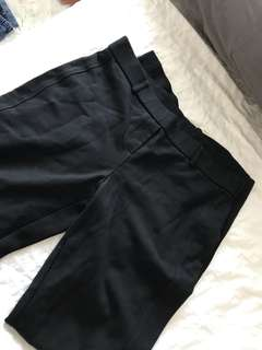 Dress Pants Size M