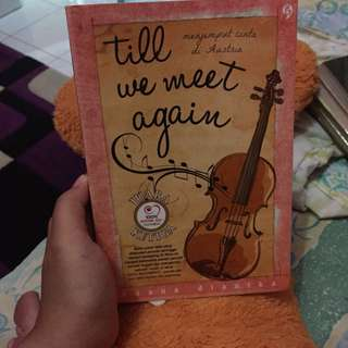 Novel till we meet again