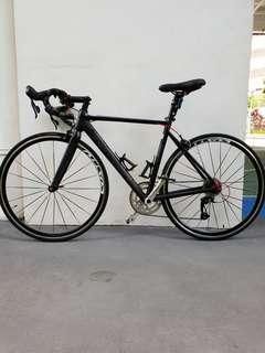 Full carbon road bike twitter