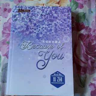 Novel: Because of You