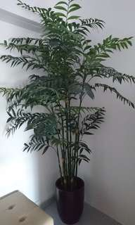 Shady the Artificial Plant with pot