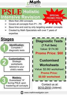 PSLE Holistic Intensive Revision