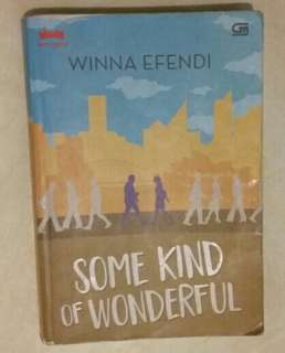 Novel Some Kind of Wonderful-Winna Efendy