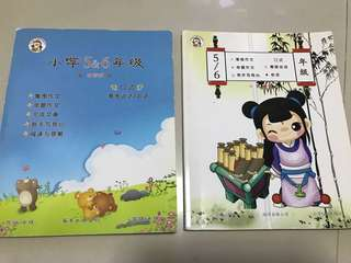 Primary 5/6 Chinese essay and oral guide book
