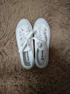 White canvas shoe