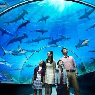 Sea Aquarium tickets x2
