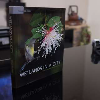 Wetlands In A City