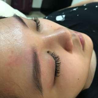 Korean Eyelash Extensions