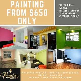 Professional Whole House Painting