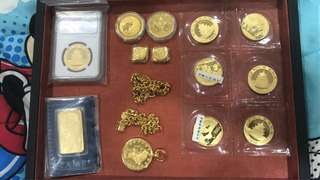 Gold china panda kangaroo maple pamp nuggets