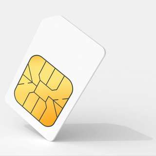 Retailer Sim Activation with FREE 100 Load Wallet