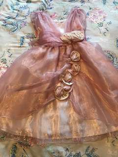 Beautiful Princess Dress in PInk Color Suitable for Ages 5-6 Used