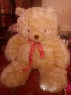 TeddyBear For Sell