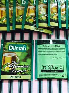🈹️13個薄荷葉茶包,Dilmah pure peppermint leaves all