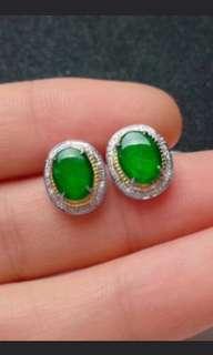 🍍18K Gold - Grade A 水润 Imperial Green Cabochon Jadeite Jade Earrings🍍