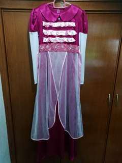 Disney Princess Aurora Gown