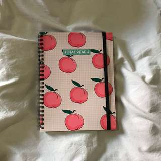 Notebook A5 TYPO Peach