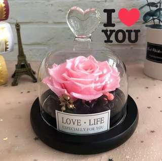 🌷Gorgeous Preserved Rose🌷in a glass jar. 6 colours/designs avail❗️do refer to photos 🤗 can last up to 2 years❗️*FREE greeting card upon request 👌🏻Ideal gift for your loved ONE or for decoration at home/office 😀