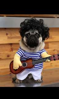 Funny boy pet costume pappy guitar player cat dog dress
