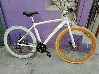 Doppelganger Alloy Roadbike