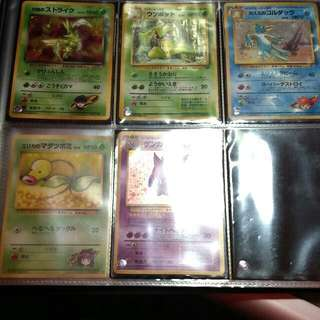 HOLOGRAPHIC Pokemon Cards