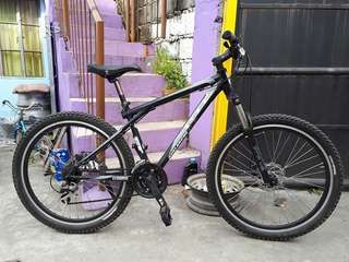 Authentic GT Mt. Bike