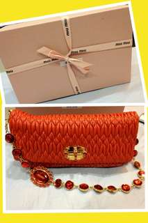 Miu Miu Iconic Crystal Bag ( Leather)