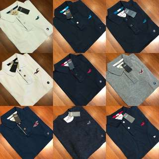 [NEW INSTOCKS] Hollister / Abercrombie & Fitch