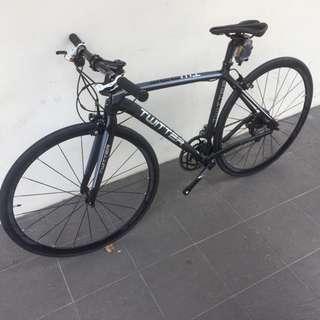 Twitter Carbon Fork Hybrid Bike, 18-speed, light weight