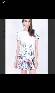 Brand New Amor Mds Dress In Floral Print
